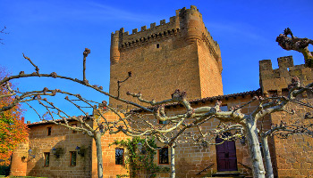 Best Rioja Wine Tours - Castle Wine Route - You can travel and taste it in our private tours