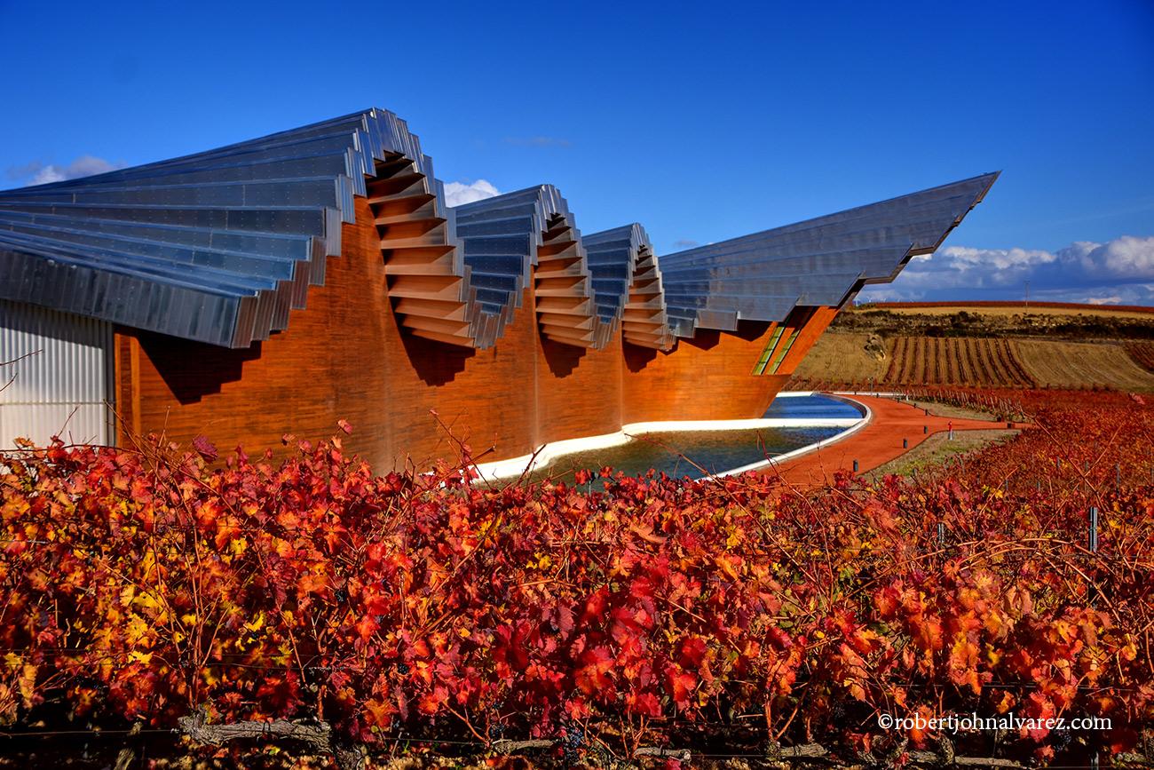 Rioja Wine Tours from San Sebastian