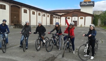 Best Rioja Wine Tours - Bike Tour visiting vineyard and wineries