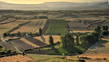 Best Rioja Wine Tours - If you like photography, this is a tour for you. The best Landscapes in La Rioja