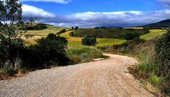 Best Rioja Wine Tours - The way of St James. Dicover it in our special tours.