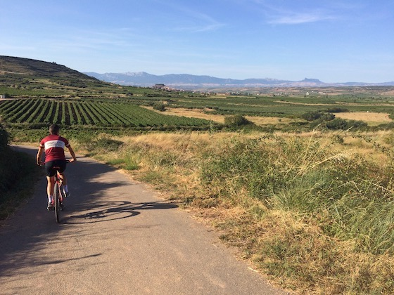 Rioja Bike Rental / Rioja Bike Tours