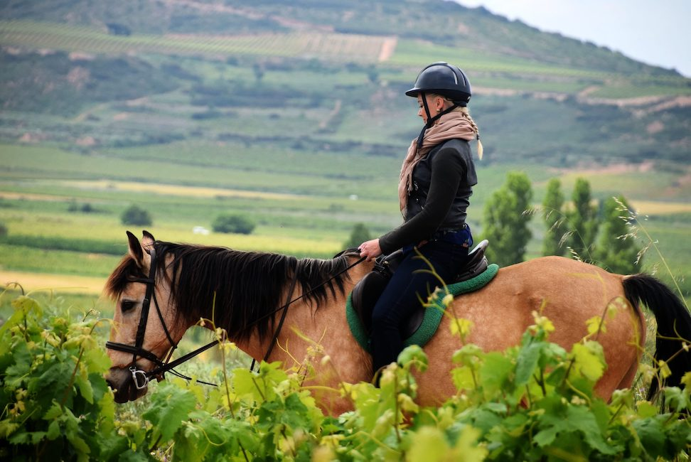 Rioja a Caballo / Paseo a caballo en Rioja