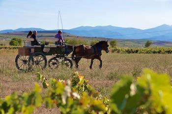 enoturismo La Rioja - Paseo en carruaje